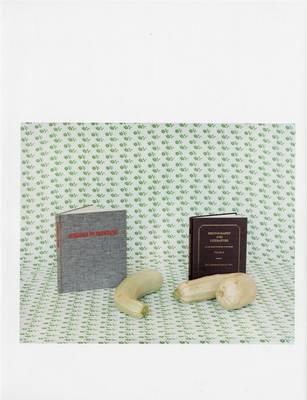 Annette Kelm (Paperback)