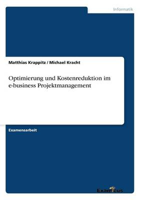 Optimierung Und Kostenreduktion Im E-Business Projektmanagement (Paperback)