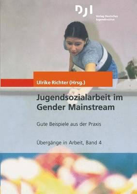 Jugendsozialarbeit im Gender Mainstream - Ubergange in Arbeit 4 (Paperback)