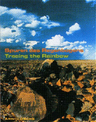 Tracing the Rainbow: Art and Life in Southern Africa (Hardback)