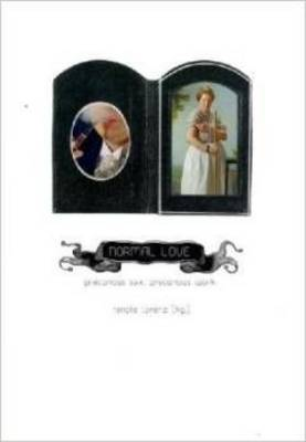 Normal Love: Precarious Work, Precarious Sex (Paperback)