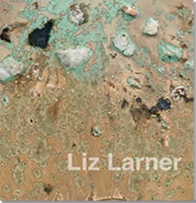 Liz Larner (Hardback)