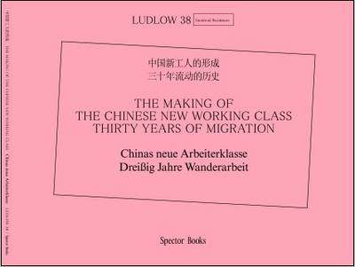 The Making of the Chinese New Working Class: Thirty Years of Migration (Paperback)