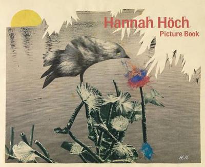 Hannah Hoch (Hardback)