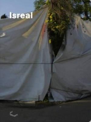 Bertram Haude - Isreal (Paperback)