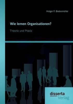 Wie Lernen Organisationen? Theorie Und Praxis (Paperback)