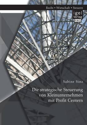 Die Strategische Steuerung Von Kleinunternehmen Mit Profit Centern (Paperback)