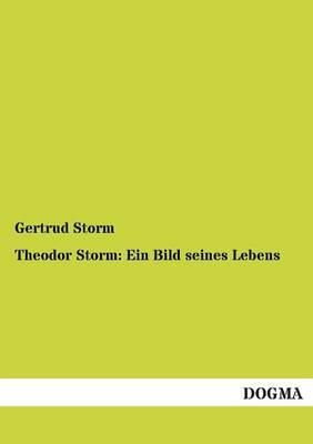 Theodor Storm: Ein Bild Seines Lebens (Paperback)
