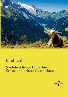 Nachdenkliches Bilderbuch (Paperback)