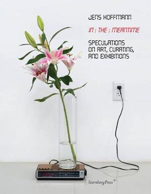 In the Meantime: Speculations on Art, Curating, and Exhibitions (Paperback)
