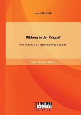 Bildung in Der Krippe? Was Bildung Fur Unterdreijahrige Bedeutet (Paperback)