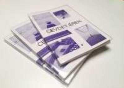 Cevdet Erek - Less Empty Maybe (Paperback)
