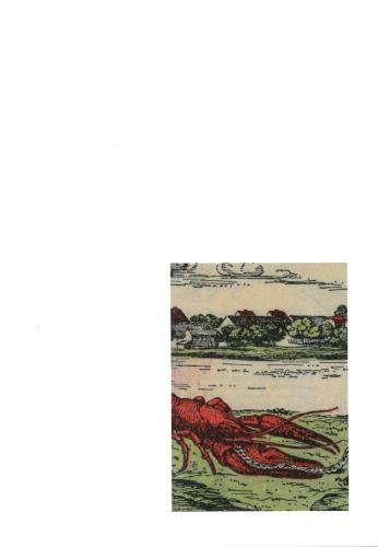 Fragments of a Crisis (Paperback)