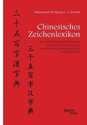 Chinesisches Zeichenlexikon. Die 3500 Haufigsten Schriftzeichen in Aussprache, Bedeutung Und Schreibung Mit Einem Praktischen Schreibubungsteil (Paperback)