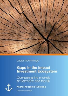 Gaps in the Impact Investment Ecosystem (Paperback)
