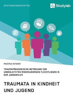 Traumata in Kindheit Und Jugend. Traumapadagogische Betreuung Von Unbegleiteten Minderjahrigen Fluchtlingen in Der Jugendhilfe (Paperback)