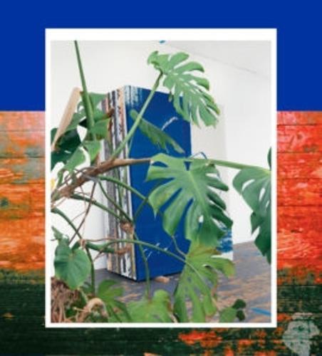 Wade Guyton: Das New Yorker Atelier (Hardback)