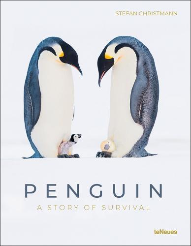 Penguin: A Story of Survival (Hardback)