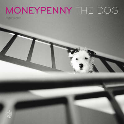 Moneypenny the Dog: A Homage to a Dog, Photography, and Life Itself (Paperback)