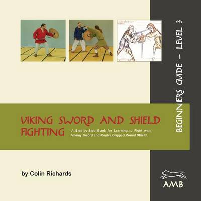 Viking Sword and Shield Fighting Beginners Guide Level 3 (Paperback)