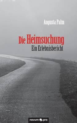 Die Heimsuchung - Ein Erlebnisbericht (Paperback)