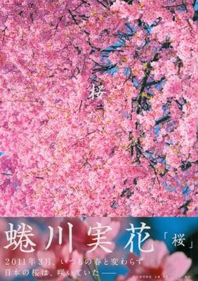 Mika Ninagawa - Sakura: Cherry Blossom (Hardback)