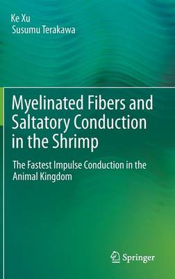 Myelinated Fibers and Saltatory Conduction in the Shrimp: The Fastest Impulse Conduction in the Animal Kingdom (Hardback)