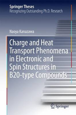 Charge and Heat Transport Phenomena in Electronic and Spin Structures in B20-type Compounds - Springer Theses (Hardback)