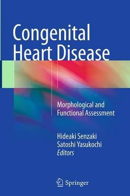 Congenital Heart Disease: Morphological and Functional Assessment (Paperback)