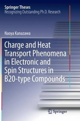 Charge and Heat Transport Phenomena in Electronic and Spin Structures in B20-type Compounds - Springer Theses (Paperback)