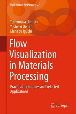 Flow Visualization in Materials Processing: Practical Techniques and Selected Applications - Mathematics for Industry 27 (Hardback)