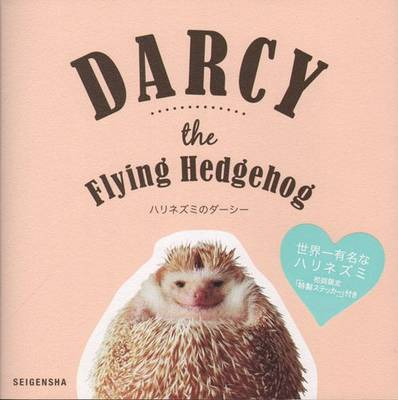 Darcy the Flying Hedgehog (Paperback)