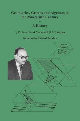 Geometries, Groups and Algebras in the Nineteenth Century - A History (Paperback)
