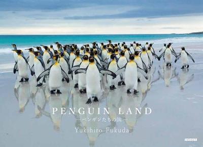 Penguin Land (Paperback)
