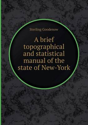 A Brief Topographical and Statistical Manual of the State of New-York (Paperback)
