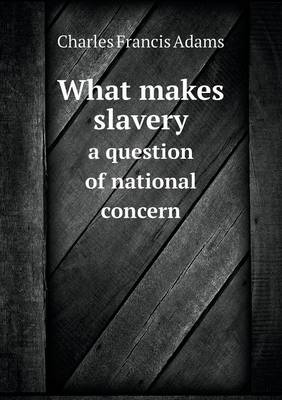 What Makes Slavery a Question of National Concern (Paperback)