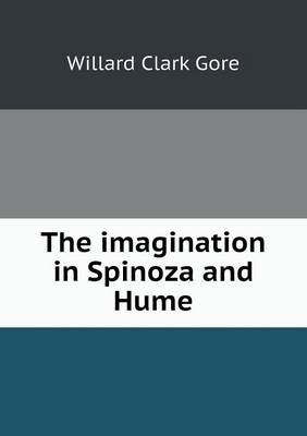 The Imagination in Spinoza and Hume (Paperback)