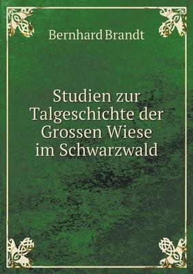 Studien Zur Talgeschichte Der Grossen Wiese Im Schwarzwald (Paperback)