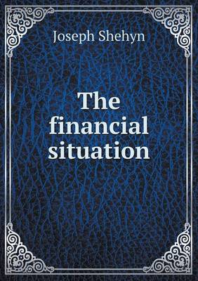 The Financial Situation (Paperback)