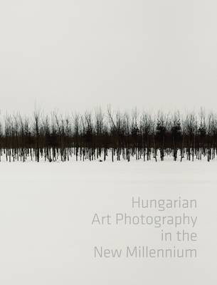 Hungarian Art Photography in the New Millenium (Hardback)