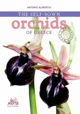 Self-Sown Orchids of Greece (Paperback)