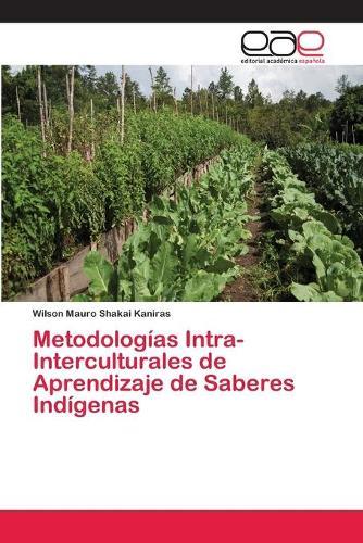 Metodologias Intra-Interculturales de Aprendizaje de Saberes Indigenas (Paperback)