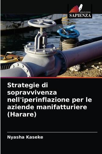 Strategie di sopravvivenza nell'iperinflazione per le aziende manifatturiere (Harare) (Paperback)