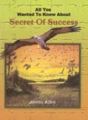 All You Wanted to Know About the Secret of Success (Paperback)