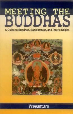 Meeting the Buddha: Meeting the Buddhas (Hardback)