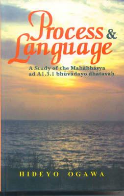 Process and Language: A Study of the Mahabashya (Hardback)
