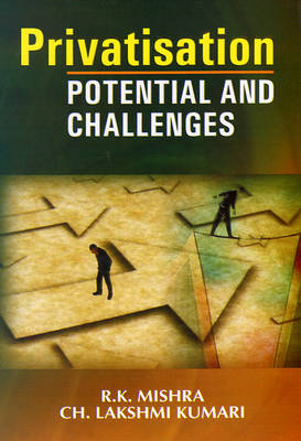 Privatisation Potential and Challenges (Hardback)
