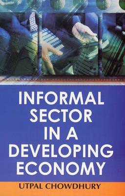 Informal Sector in a Developing Economy (Hardback)