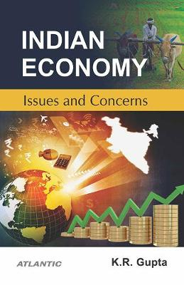 Indian Economy, Issues and Concerns (Paperback)
