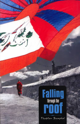 Falling Through the Roof (Paperback)